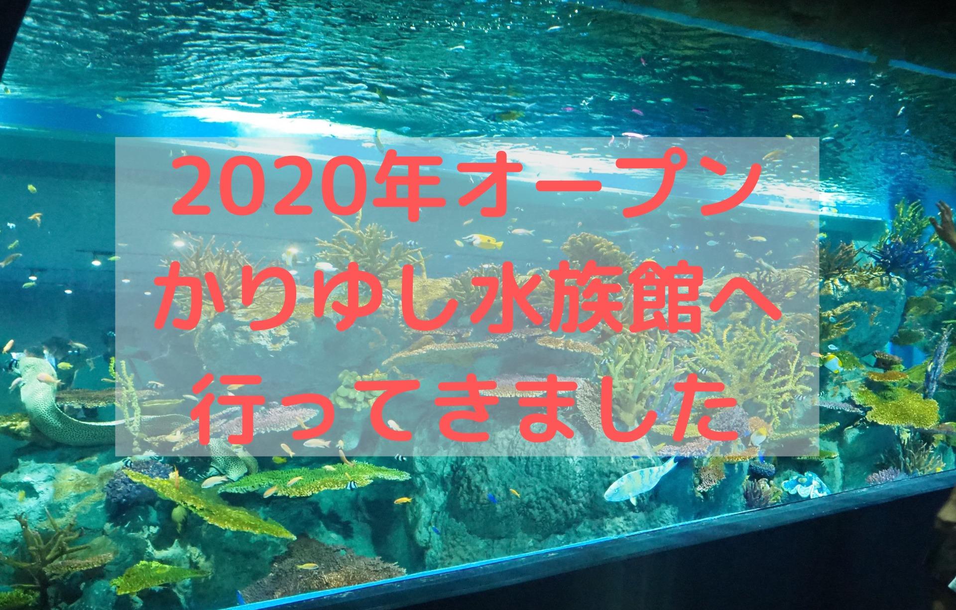 DMMかりゆし水族館への訪問記、行き方、チケットの買い方